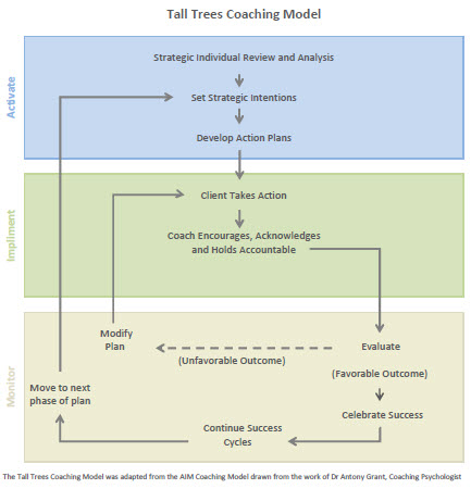 Tall-Trees-Coaching-Model2